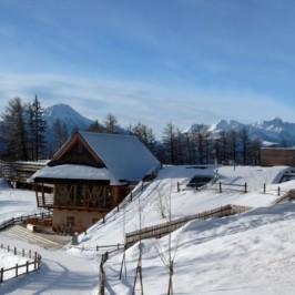 AUSTRIA: A SPASSO TRA LE ALPI